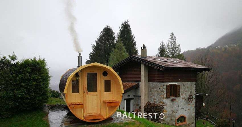 pic Reasons-for-mold-appearance-in-a-barrel-sauna-4